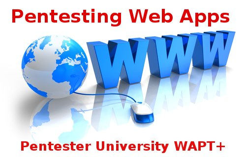 Web Application Pentesting (WAPT+)